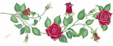 roseboders